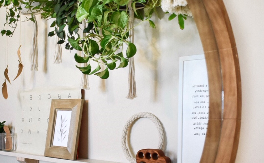 Oliver's Feature Plant Wall