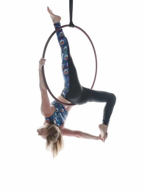 Aerial Hoop Online Instructor Training Beginner to Intermediate 100+Moves