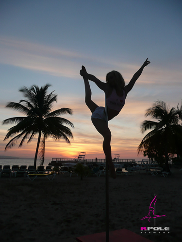 Beach_Pole_Dance_Pole