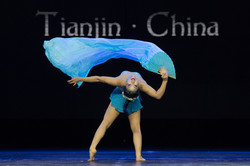 Pole Passion World Pole Dance Championships China 2018 (5)