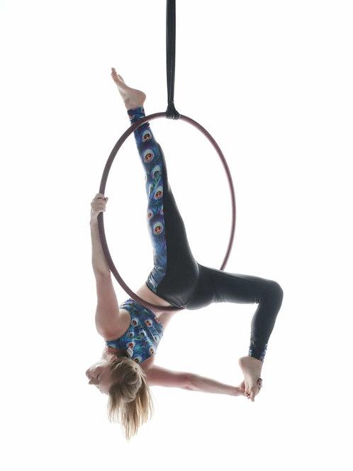 ONLINE Aerial Hoop Training. Beginner to Intermediate 100+Moves