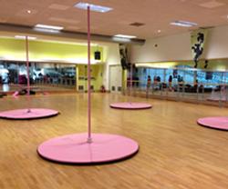 RPole-Studio-Fit-portable-poles-for-lessons