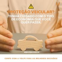 Proteção veicular.png