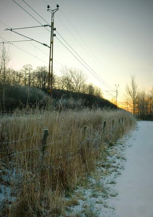 Tracks to Nuet, 2017
