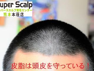 正しいヘアケア方法(頭皮の皮脂の重要性)