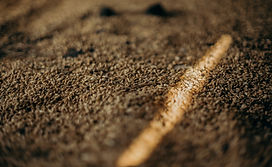 close-up-photo-of-grains-3066790.jpg
