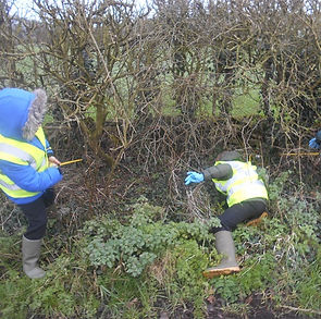 Hook Litter Picking (10).JPG