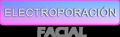 ELECTROPORACION.png