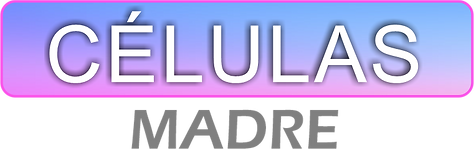 CELULAS MADRE.png