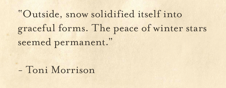"""""""Outside, snow solidified itself into graceful forms. The peace of winter stars seemed permanent."""" ― Toni Morrison"""