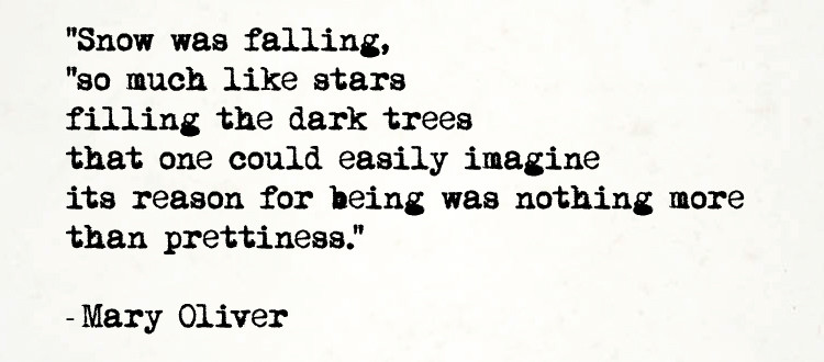 """""""Snow was falling / so much like stars / filling the dark trees / that one could easily imagine / its reason for being was nothing more / than prettiness."""" - Mary Oliver"""