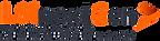 LSI-logo-n.png