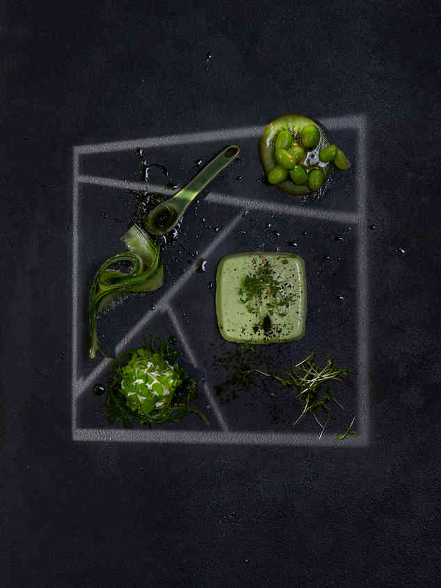 Food & geometric light