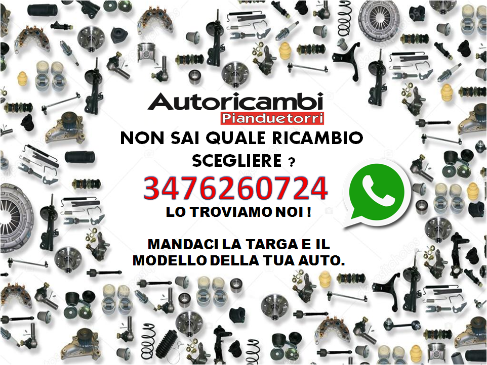 RICAMBIO.png