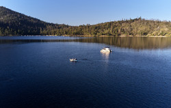 Bass-Lake_061