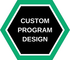 CUSTOM PROGRAM DESIGN.png