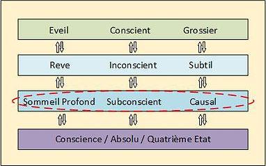 diagram5.jpg