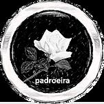 Padroeir