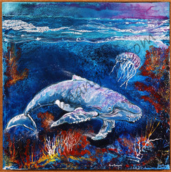 Baleine méduse (70x70)