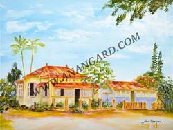 Maison caledonienne 1    50 X 65