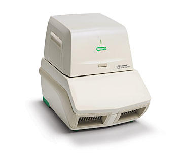 Biorad CFX Connect Real Time PCR