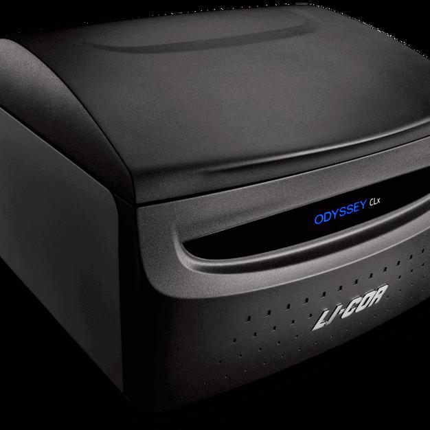 LI-COR Odyssey Imager