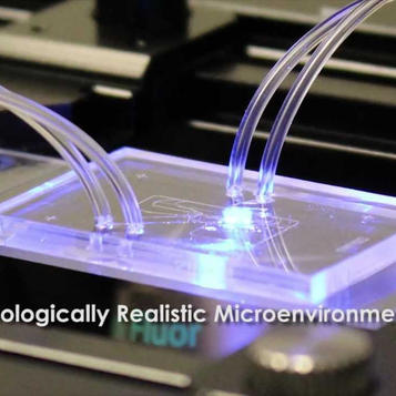 Synvivo Microfluidic Cell Culture System