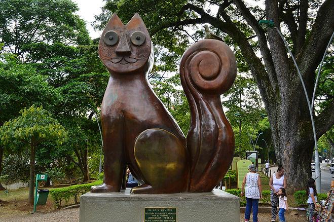 El Gato del río en Cali, Valle del Cauca, Colombia