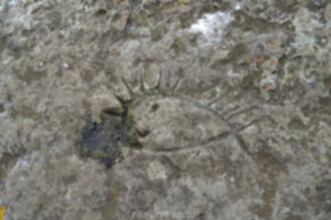 Petroglifos en la Piedra del gritadero en Parque Natural de Quininí (Cundinamarca)