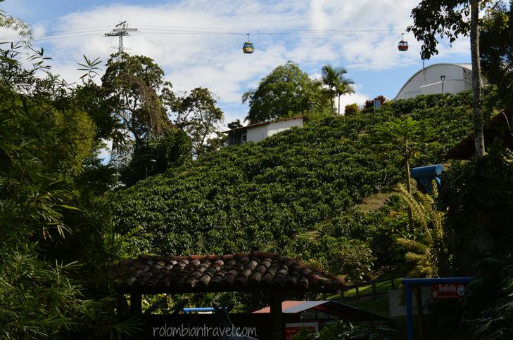Paisaje en el Parque del Café (Quindío)