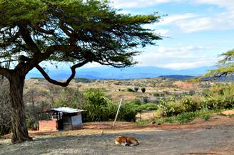 Hospedaje en el Desierto de la Tatacoa, Huila