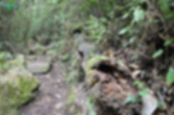 Parque Chicaque, Cundinamarca
