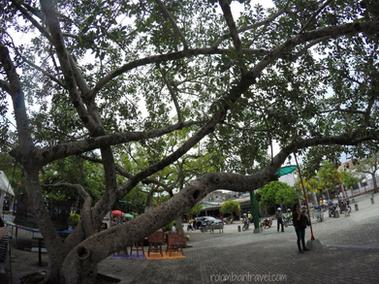 Parque principal Anapoima (Cundinamarca)