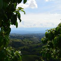 Paisaje Cultural Cafetero: una rodada con aroma a café