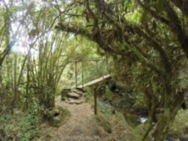 puente de madera cercano a la cascada el chiflon