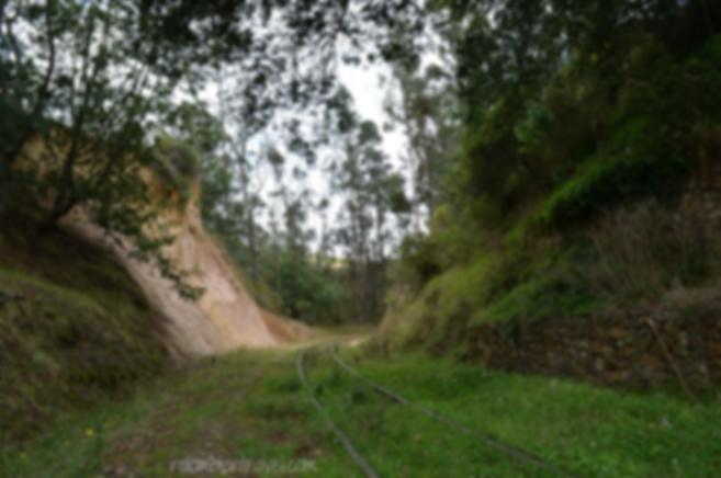 Vía férrea camino a Suesca