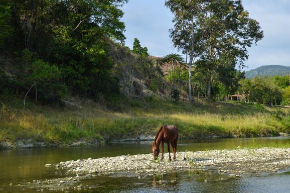Una linda postal que nos llevamos de Esmeraldas, Ecuador