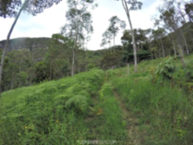 Camino desde Hacienda La Vuelta hacia Cerro de Quininí, Cundinamarca