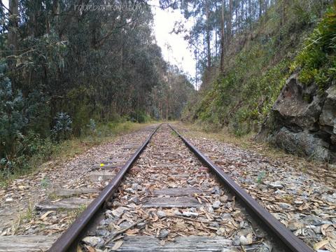 Camino por la vía férrea de Santa Rosita a Suesca