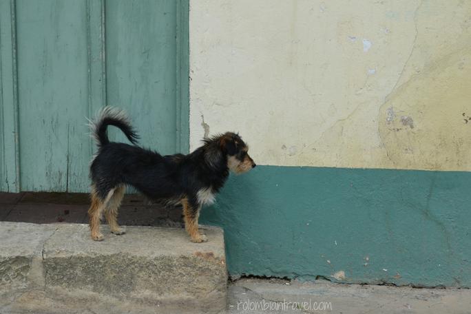 Habitantes de Suesca (Cundinamarca)