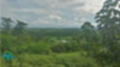 La llanura en Puerto López, Meta, Colombia