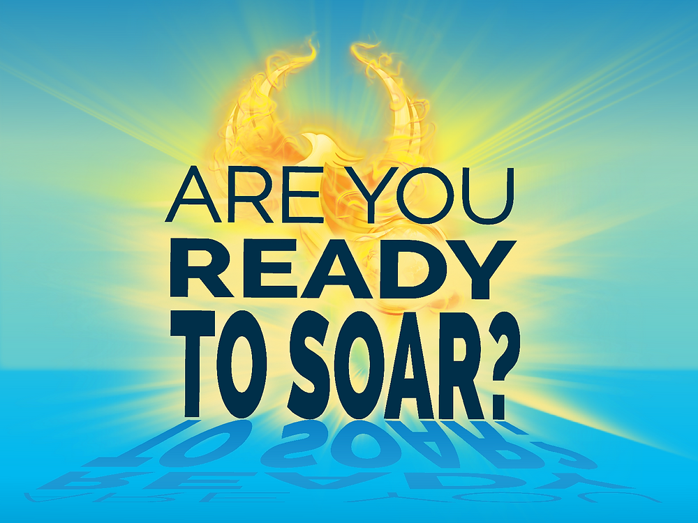 Are you ready to soar phoenix quiz cover