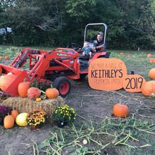 19 Pumpkin Patches Across Central Illinois