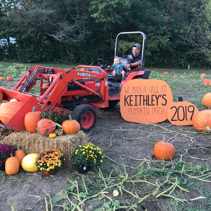 19 Pumpkin Patches Across Central Illinois