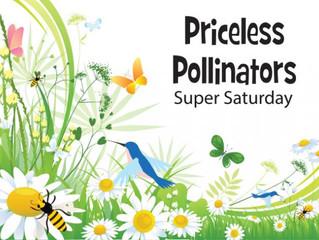 Priceless Pollinators Super Saturday, 5/5/18, 11am-3pm
