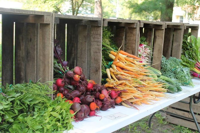 Your Farm-Stand Fix: A Guide to Farm Stands and Stores in Central Illinois