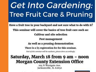 Fruit Tree Care & Pruning Workshop 3/18/17
