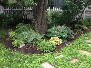 Introduction to Sustainable Landscaping 04/28/15