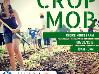 "Be a ""Farmer for a Day"" at Choice Roots Farm in Sherman, Illinois!"