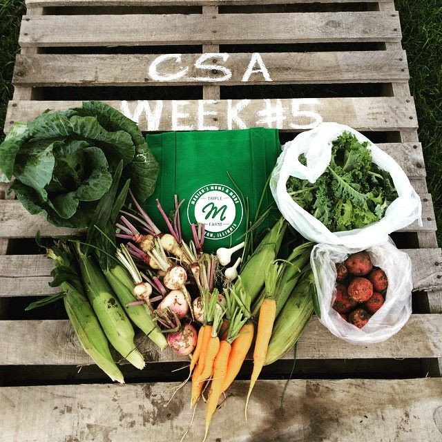Have You Found Your CSA Yet? Let us Help!